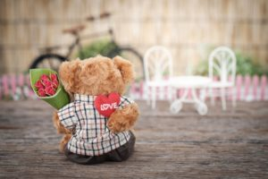 valentines day vocabulary teddy bear